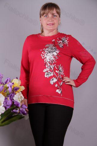 Трикотажні блузи-туніки